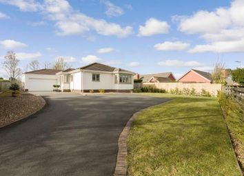 Thumbnail 4 bed bungalow for sale in Crossfell, Darras Hall, Ponteland, Northumberland