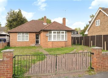 Thumbnail 4 bed detached bungalow for sale in Blackmoor Wood, Ascot, Berkshire