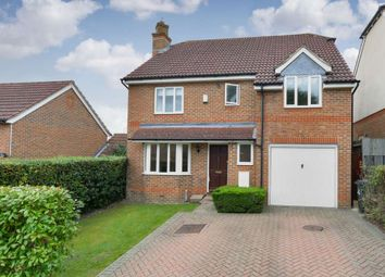 Thumbnail 4 bed detached house to rent in St. Margaret Drive, Epsom