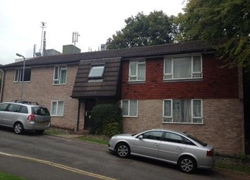 Thumbnail 2 bed flat to rent in Leahurst Court Road, Preston, Brighton