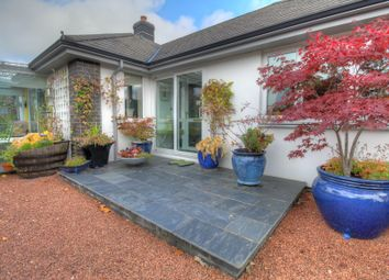 Thumbnail 3 bed bungalow for sale in Dolafon, Foel, Welshpool