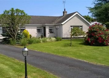 Thumbnail 4 bed detached bungalow for sale in Mearne Road, Downpatrick, Co.Down