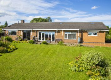 Thumbnail 3 bed bungalow for sale in Stonewold, Wood Lane, Horsley Woodhouse, Derbyshire