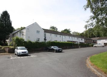 Thumbnail 1 bed flat to rent in Larch Place, Johnstone