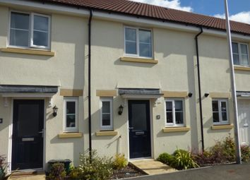 Thumbnail 2 bed terraced house to rent in Tigers Way, Axminster, Devon