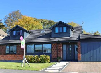 Thumbnail 4 bed detached bungalow for sale in Gorse Grove, Helmshore, Rossendale