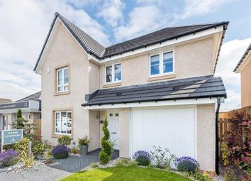 "Thumbnail 4 bed detached house for sale in ""Cullen"" at Mayburn Walk, Loanhead"