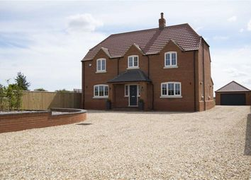 Thumbnail 5 bed property for sale in Main Road, Saltfleetby, Louth