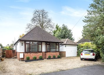 Thumbnail 3 bed detached bungalow to rent in Denton Road, Wokingham, Berkshire