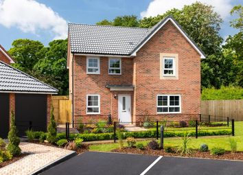 "Thumbnail 4 bed detached house for sale in ""Radleigh"" at Shackleton Close, Whitby"