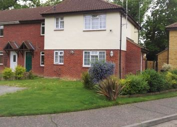 Thumbnail 1 bed property to rent in Langdale, White Court, Braintree