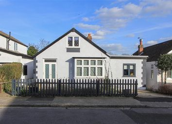 Thumbnail 4 bed detached bungalow for sale in Wynn Road, Tankerton, Whitstable