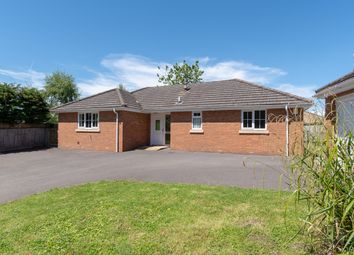 Thumbnail 3 bed detached bungalow to rent in Milbourne, Malmesbury