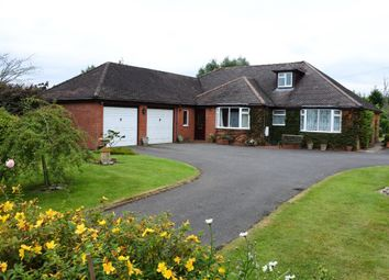 Thumbnail 5 bed detached bungalow for sale in Bowridge Hill, Gillingham