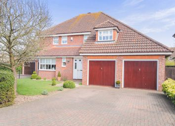 Thumbnail 4 bedroom detached house for sale in Foxglove Road, Thetford