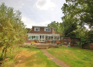 Thumbnail 5 bed bungalow for sale in Eight Bells Close, Buxted, Uckfield, East Sussex
