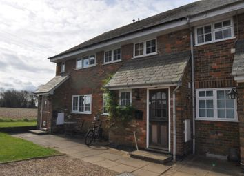 Thumbnail 4 bed terraced house to rent in Darley Hall, Luton
