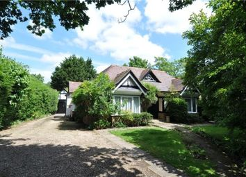 Thumbnail 4 bed detached house for sale in Southampton Road, Lyndhurst, Lyndhurst