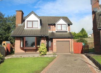 Thumbnail 4 bed detached house for sale in Burnet Close, Newtownabbey