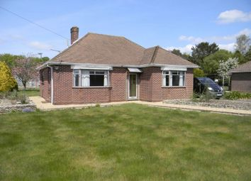 Thumbnail 3 bed bungalow for sale in Brook Avenue, Warsash, Southampton