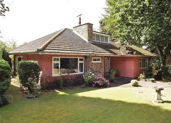 Thumbnail 3 bed detached bungalow for sale in Rattlers Road, Brandon, Suffolk