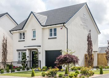 "Thumbnail 4 bed detached house for sale in ""Fenton"" at Meikle Earnock Road, Hamilton"