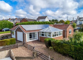 Thumbnail 4 bed detached bungalow for sale in West End, Barlborough, Chesterfield