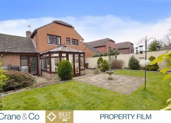 Thumbnail 4 bed detached house for sale in Beechwood Close, Hailsham