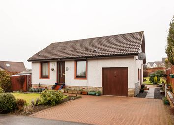 Thumbnail 3 bed bungalow for sale in Errochty Grove, Perth