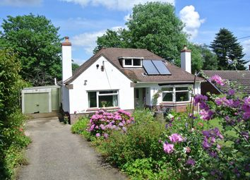 Thumbnail 3 bed detached bungalow for sale in Penywaun Road, St Dials, Cwmbran