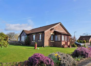 Thumbnail 3 bed detached bungalow for sale in Dale View, Irthington, Carlisle, Cumbria