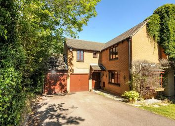 Thumbnail 4 bedroom detached house to rent in Goughs Lane, Warfield, Bracknell