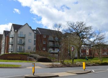 2 bed flat to rent in Philmont Court, Bannerbrook Park, Coventry CV4