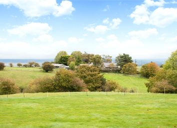Thumbnail 4 bed equestrian property for sale in Pant Y Gof, Halkyn, Holywell
