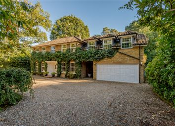 Thumbnail 6 bed detached house for sale in Sunning Avenue, Ascot, Berkshire
