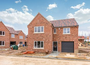 Thumbnail 4 bed detached house for sale in Cucumber Lane, Beccles