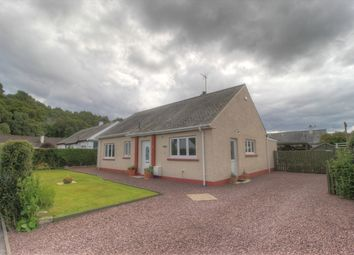 Thumbnail 3 bed detached house for sale in Drumblair Crescent, Inverness