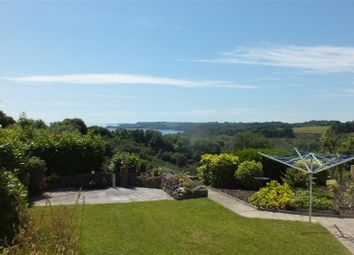 Thumbnail 4 bedroom detached house for sale in Greendale, Stepaside, Narberth, Pembrokeshire