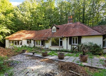 Thumbnail 4 bed property for sale in Woodlands Lane, Windlesham, Surrey