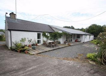 Thumbnail 4 bed detached bungalow for sale in Ballykine Road, Ballynahinch, Down.