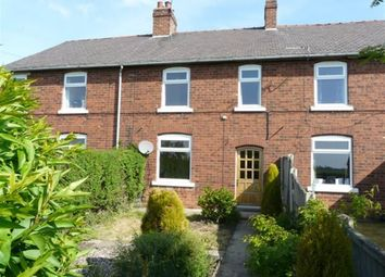 Thumbnail 3 bed terraced house to rent in Flaxley Road, Selby