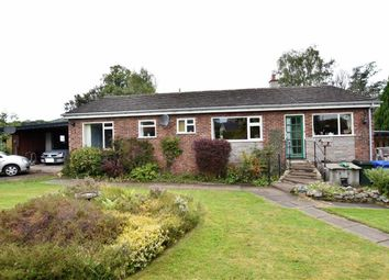 Thumbnail 3 bed detached bungalow for sale in Balmacaan Road, Drumnadrochit, Inverness