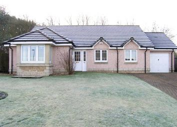 Thumbnail 3 bed detached bungalow for sale in 45 Paterson Gardens, Hawick