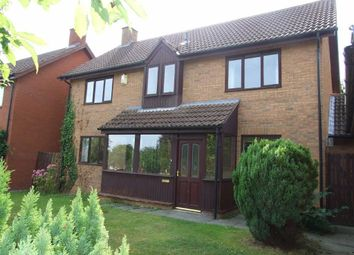 Thumbnail 4 bed detached house to rent in Ffordd Dolgoed, Mold, Flintshire