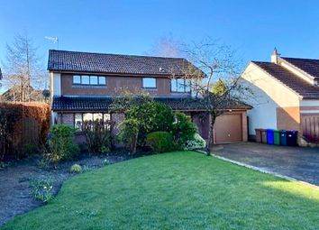 Thumbnail 4 bed property for sale in Baird Road, Alloway, Ayr