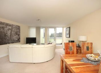 Thumbnail 2 bed flat for sale in The Dale, Sheffield, South Yorkshire