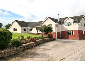 Shillingford, Devon EX16. 6 bed bungalow for sale