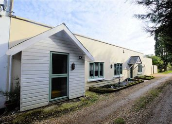 Thumbnail 3 bedroom semi-detached bungalow to rent in The Plain, Epping
