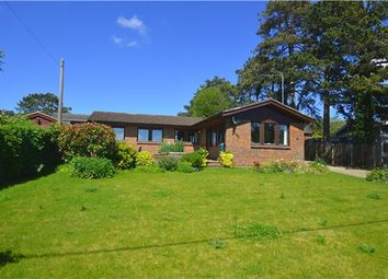Thumbnail 4 bed detached bungalow for sale in West End, Kemsing, Sevenoaks, Kent