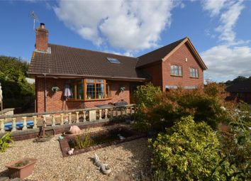 Thumbnail 6 bed detached house for sale in Western Road, Crediton, Devon